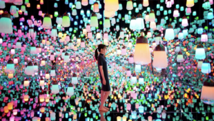 CD Lecture Series: teamLab
